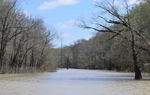 deep bayou